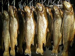 Ger�ucherte Fische